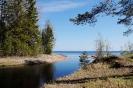 Речка Яни Онежское озеро