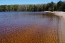 Заячья губа Онежское озеро пляж