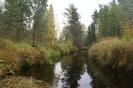Речка Падозерка (Чална)