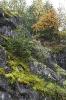Осень в мраморном каньоне