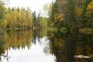 Река Видлица