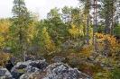 Северное Приладожье осень