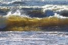 Ладога поэзия воды
