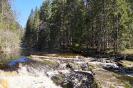 Река Пукамонйоки Карелия