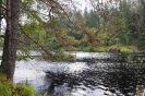 Река Тулемайоки Карелия