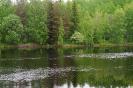 Река Шуя Карелия