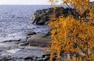 Карелия природа Северное Приладожье